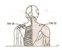 TW_15