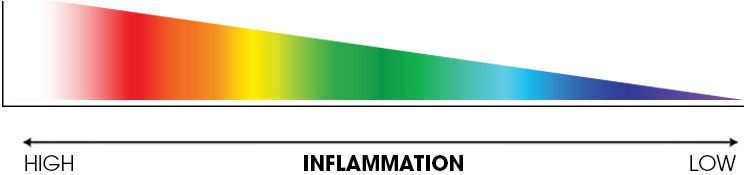 pain inflammation scale